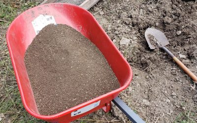 Blending Soil with Sustainability